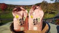 【ふるさと納税】無洗米 もみ貯蔵米 ななつぼし10kg