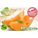 【ふるさと納税】JAふらの厳選!約1.6kg×5玉【上富良野