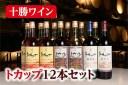 【ふるさと納税】C002-2-1 十勝ワイントカップ12本セ
