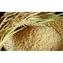 【ふるさと納税】【炭壌米 めんこいな】元年産 玄米 5kg×