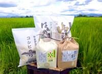 【ふるさと納税】H30年産_特別栽培米_わくわくセット(つや