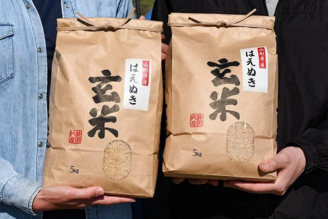 【ふるさと納税】山形県産 はえぬき玄米 10kg(5kg×2袋)2019年産新米 ≪こだわりの自家栽
