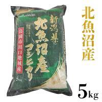 【ふるさと納税】105-1【H30年産】北魚沼産コシヒカリ(