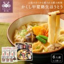 【ふるさと納税】 郷土料理 ほうとう 山梨 生ほうとう 武田