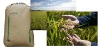 【ふるさと納税】岐阜県ハツシモ 玄米60kg+白米5kgセッ