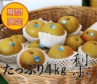 【ふるさと納税】旬の美味しさをお届け!豊水(梨)たっぷり4k