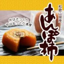 【ふるさと納税】あんぽ柿 70g×10個 あんぽ柿 あんぽが