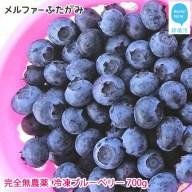 【先行予約】完全無農薬栽培 完熟ブルーベリー700g(冷凍)