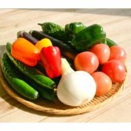 【ふるさと納税】【宮崎県産】旬のおすすめ野菜詰め合わせセット