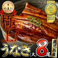 【ふるさと納税】鹿児島県大隅産!うなぎの蒲焼き8尾<計1.2