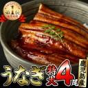 【ふるさと納税】鹿児島県大隅産くすだ屋の極上うなぎ(特大)4
