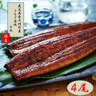 【ふるさと納税】ランキング1位獲得!鹿児島県産うなぎ長蒲焼4
