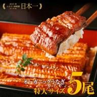 【ふるさと納税】「泰正オーガニック(横山さんの鰻)〜生産者直