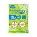 【サラヤ】 匠の塩飴 マスカット味 100g 【フード・飲料】