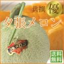 【夕張農協共撰品】夕張メロン(優ランク、約1.6kg大玉×1個入)