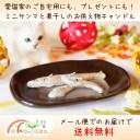 ☆メール便で送料無料☆ ミニ さんま キャンドル 煮干し セット お供え ロウソク 猫用 ペット供養