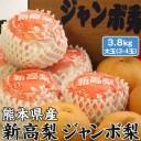 新高梨・ジャンボ梨 贈答用 熊本県産 1箱 約3.8kg (大玉3-4玉入り)高級ギフト・送料無料