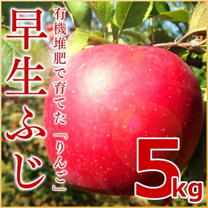 北海道 余市産 りんご【早生ふじ】5kg有機質肥料使用 産地