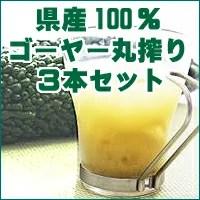 沖縄県産ゴーヤー100%ジュースゴーヤー原液500ml×3本セット 無添加の丸搾り!青汁系健康飲料のゴーヤージュース。 【RCP】