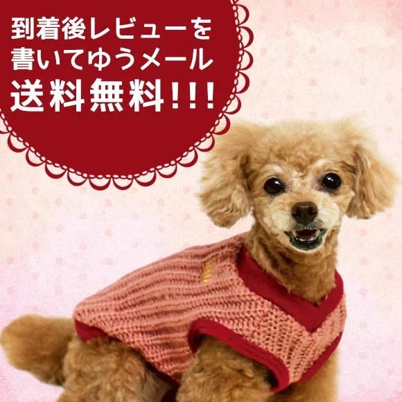 【ドッグウェア】(iDog) おしゃれなリブ編みのニットベスト☆ ゆうメール送料無料