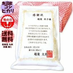 2019 令和元年 母の日ギフト 魚沼産 こしひかり お米の