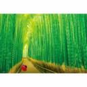 嵯峨野の竹林 300ピース ビバリー