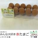 オリーブ飼料使用みんな大好き赤たまご【Lサイズ30個】【農場直送】鮮度保証!