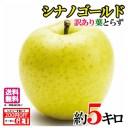 スマートフレッシュ 訳あり 葉とらず 味極み りんご 減農薬 長野県産 小布施 産地直送 約5キロ