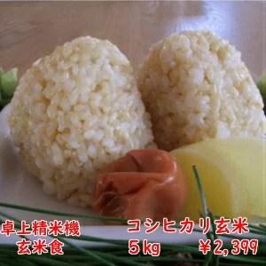 【30年産】千葉県産コシヒカリ 玄米5kg送料無料♪精米無料♪※送料無料地域に除外あり北海道・九州