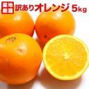 【クール便込】【訳あり5キロ】オレンジ ネーブル バレンシア
