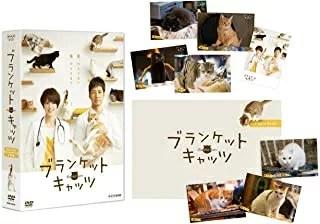 【新品】【DVD】ブランケット・キャッツ DVD-BOX【RCP】[お取寄せ品]