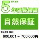【対象商品のみ】個人5年延長保証(自然故障)商品金額 税込600,001円〜700,000円用(99990003-70)