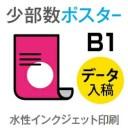 9枚■【ポスター/インクジェット印刷】 B1サイズ/光沢フォト紙/納期1日/出力のみ