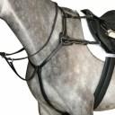 (カレッジエイト) Collegiate 馬用 5ポイント ブレストプレート IV 馬具 乗馬 ホースライディング 【楽天海外直送】