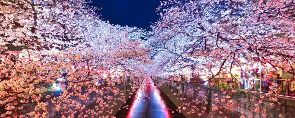 絵画風 壁紙ポスター (はがせるシール式) -地球の撮り方- 輝く川面、東京都目