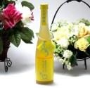篠崎 高知県の馬路村のゆず果汁を贅沢使用 ゆず梅酒はじめました。 500ml