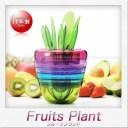 曙産業 Fruits Plant(フルーツプラント)