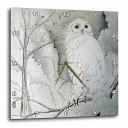 壁掛け時計 インテリア 海外モデル アメリカ 輸入 3dRose dpp_13726_1 Wall Clock, Night Owl, 10 by 10-Inch壁掛け時計 インテリア 海..