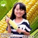 北海道富良野産 フルーツとうもころこし 恵味(めぐみ) 2Lサイズ 10本入り【送料無料】