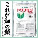 殺菌剤 トリフミン水和剤(100g)トリフルミゾール水和剤葉かび病・すすかび病・うどんこ病・黒斑病などに