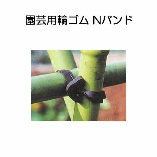 タキロンパイプ(農業用支柱)で簡単に梨のジョイント棚を作成する方法 97