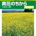 タキイ種苗 緑肥 種 緑肥からしな(シロカラシ)・黄花のちから