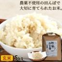ササニシキ 玄米 5kg