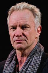profile image of Sting