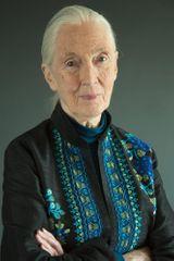 profile image of Jane Goodall