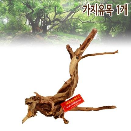 샘아쿠아 에이스 프리미엄 가지 유목 1개 (15~25cm), 15-25cm
