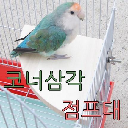 아디펫샵 앵무새 다람쥐 삼각 점프대 평상, 1개