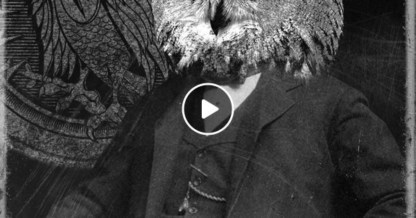 Reposters of Night Owl Radio 006 by Insomniac Events ...