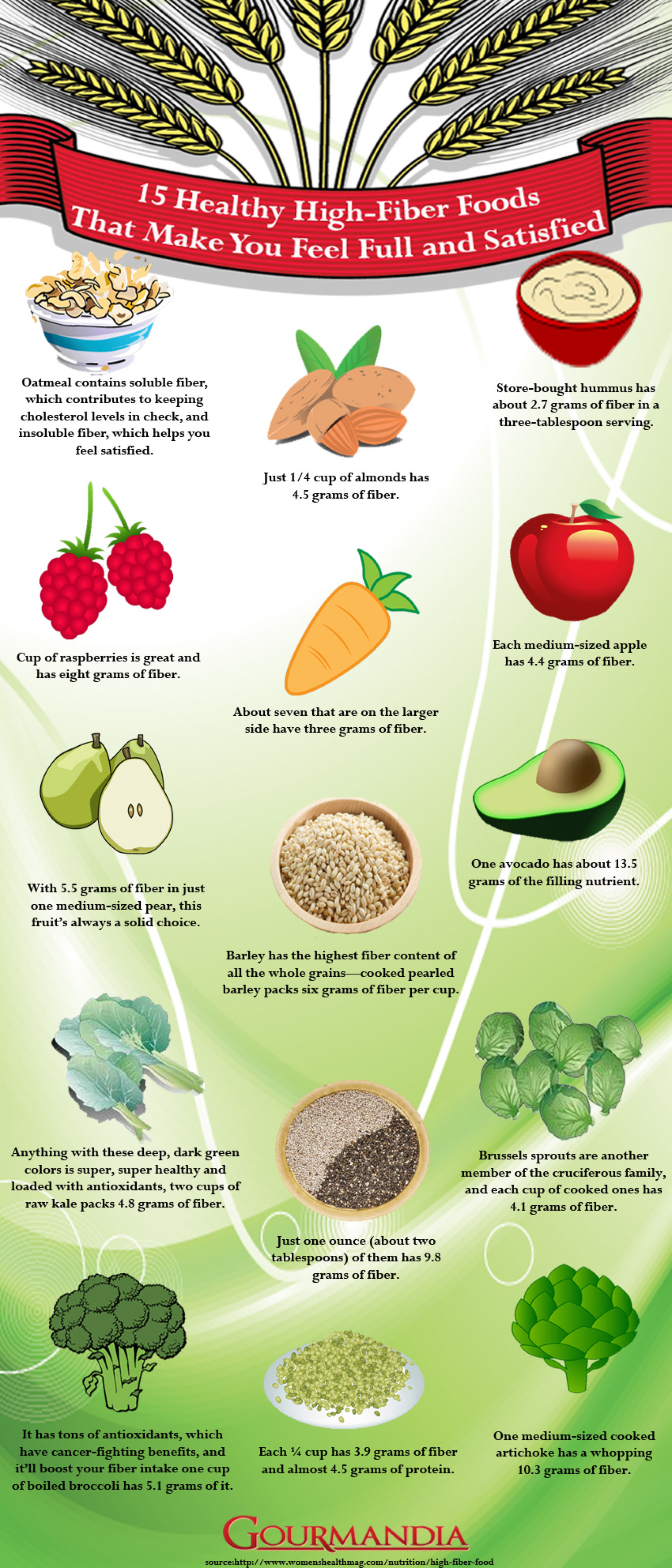 Healthy High-Fiber Foods [Infographic] | ecogreenlove