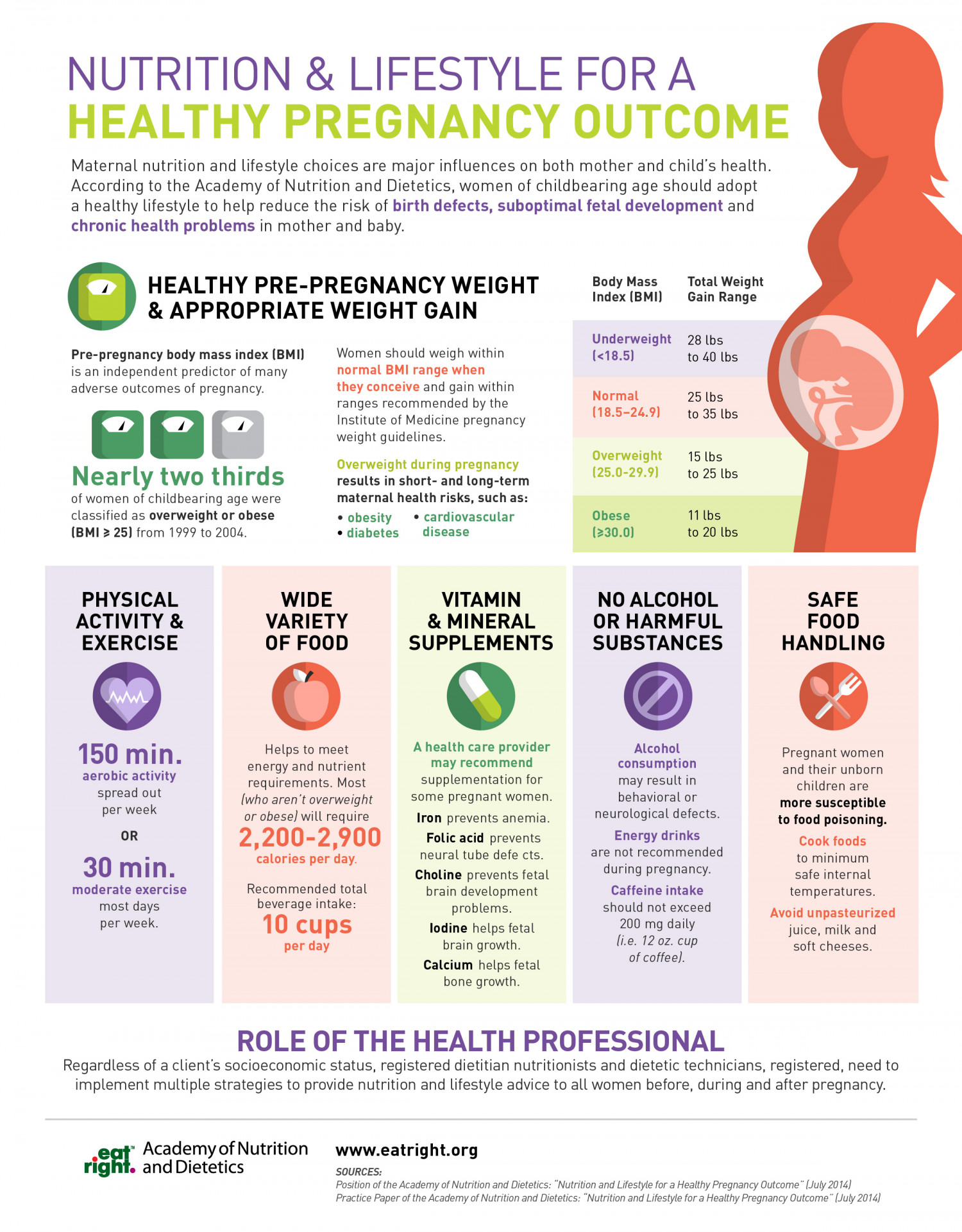 Nutrition Amp Lifestyle For A Healthy Pregnancy Outcome